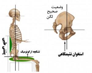 spine_sitting